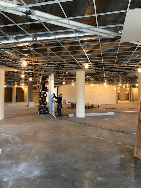 Construction of Exhibit Walls Underway